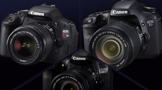 キヤノン60Dを次期カメラに考えてみるテスト。 - 2桁Dシリーズの憂い -1